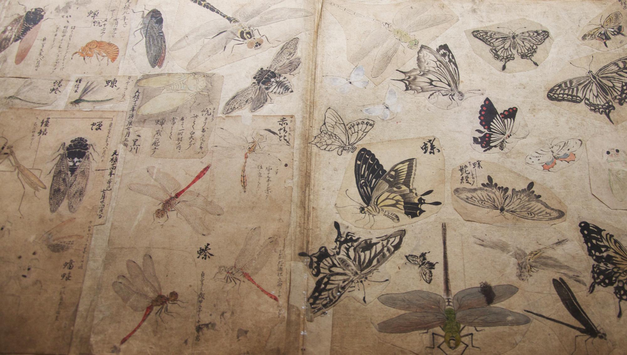 トークイベント「断片の星図 ー スクラップ・ブックへの航路」(2013年9月14日 19:00〜)